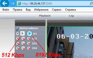 NETSurveillance WEB — плагин для видеонаблюдения с помощью Internet Explorer. Скачать. Мануал