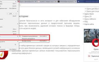 Автоперевод страниц в Опере на русский: как настроить