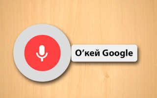 Обзор приложения «Окей Гугл» для Андроид. Как включить и настроить голосовой поиск на телефоне