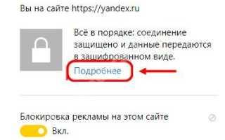 Как в Yandex browser включить и выключить защиту Протект