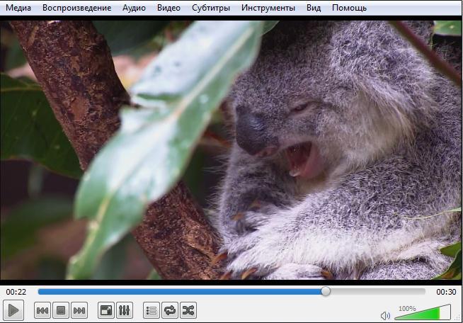 Zvuk-otstaet-ili-operezhaet-video.jpg.pagespeed.ce.m7007EaZe_.jpg