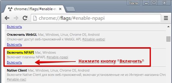 Kak-vklyuchit-podderzhku-NPAPI-v-brauzere-Google-Chrome.jpg