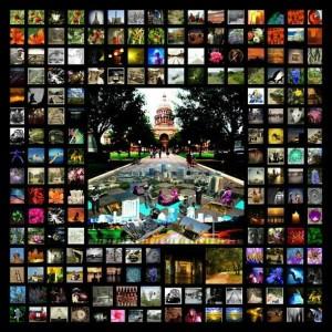 collage-300x300.jpg