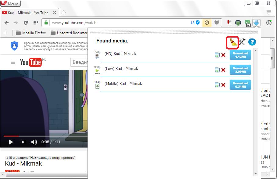 Ochistka-spiska-Flash-Video-Downloader-dlya-Opera.png