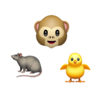 animal-symbols.png