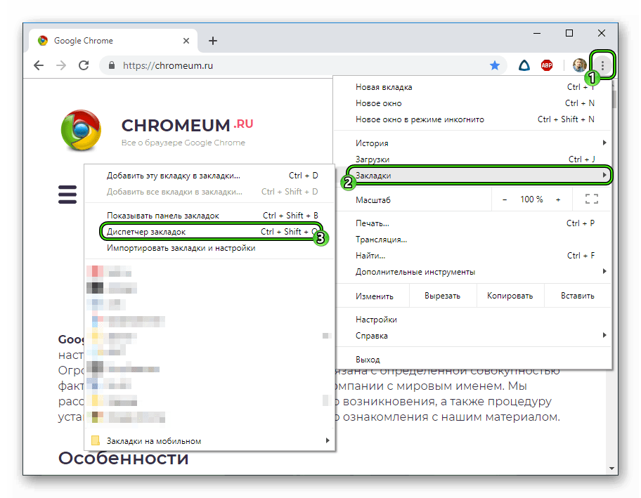 Punkt-Dispetcher-zadach-v-osnovnom-menyu-brauzera-Google-Chrome.png