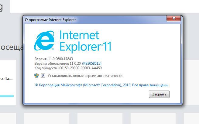 09-svedenija-internet-explorer.jpg