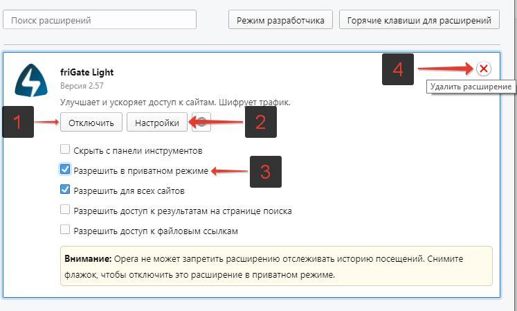 Nastrojka-FriGate-v-Opera.jpg