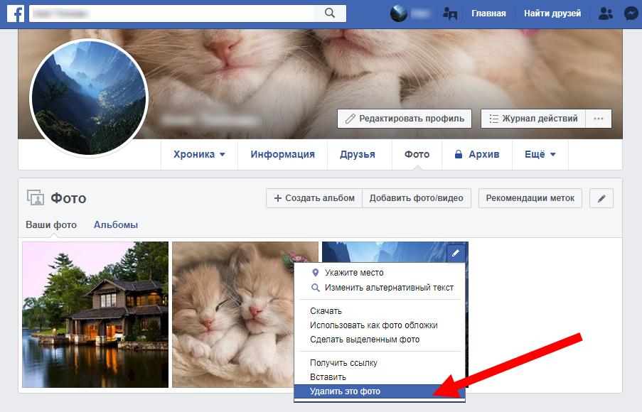 udalit-photo-facebook.png