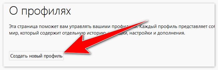 sozdat-novyj-profil.png