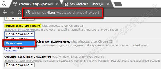 Jeksport-parolej-iz-Chrome.png
