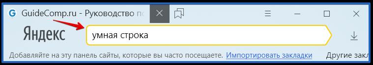 20-10-adresnaya-stroka-v-yandex-brauzere-1.png