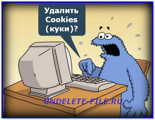 cookie-poseshhennyih-stranits-v-internete.jpg