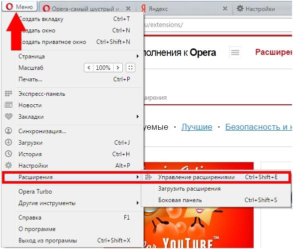 kak-okluchit-adblock-v-browser-opera-6.jpg