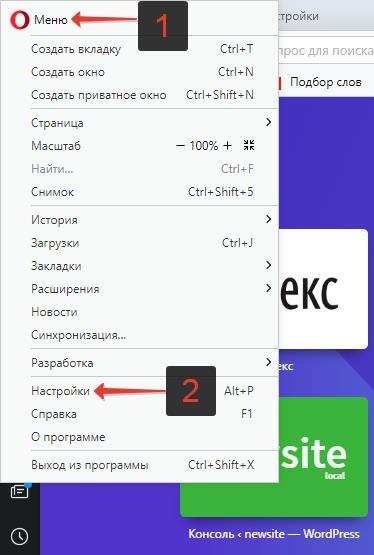 Nastroyki-brauzera-Opera.jpg