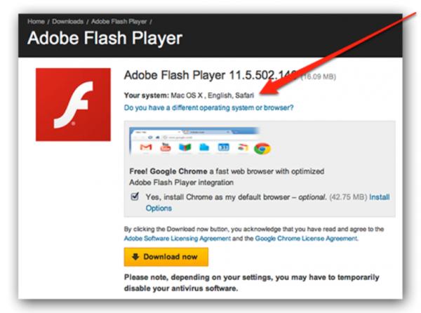 Interfejs-ofitsial-nogo-sajta-Adobe-Flash-Player-e1519123992638.png
