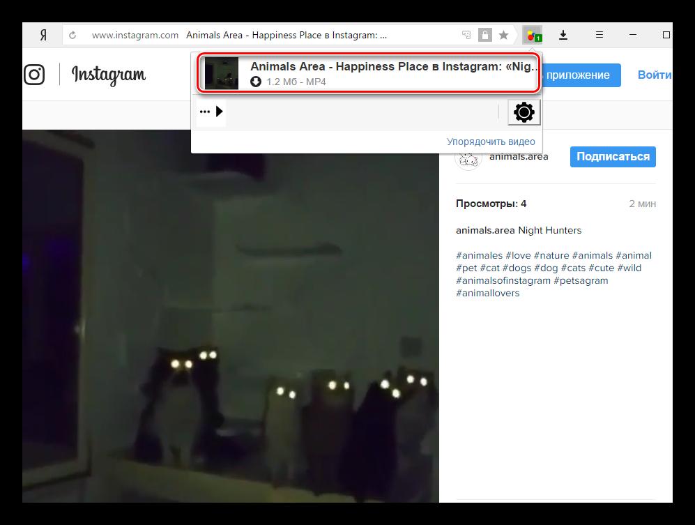 Video-DownloadHelper-YAndeks.Brauzer.png