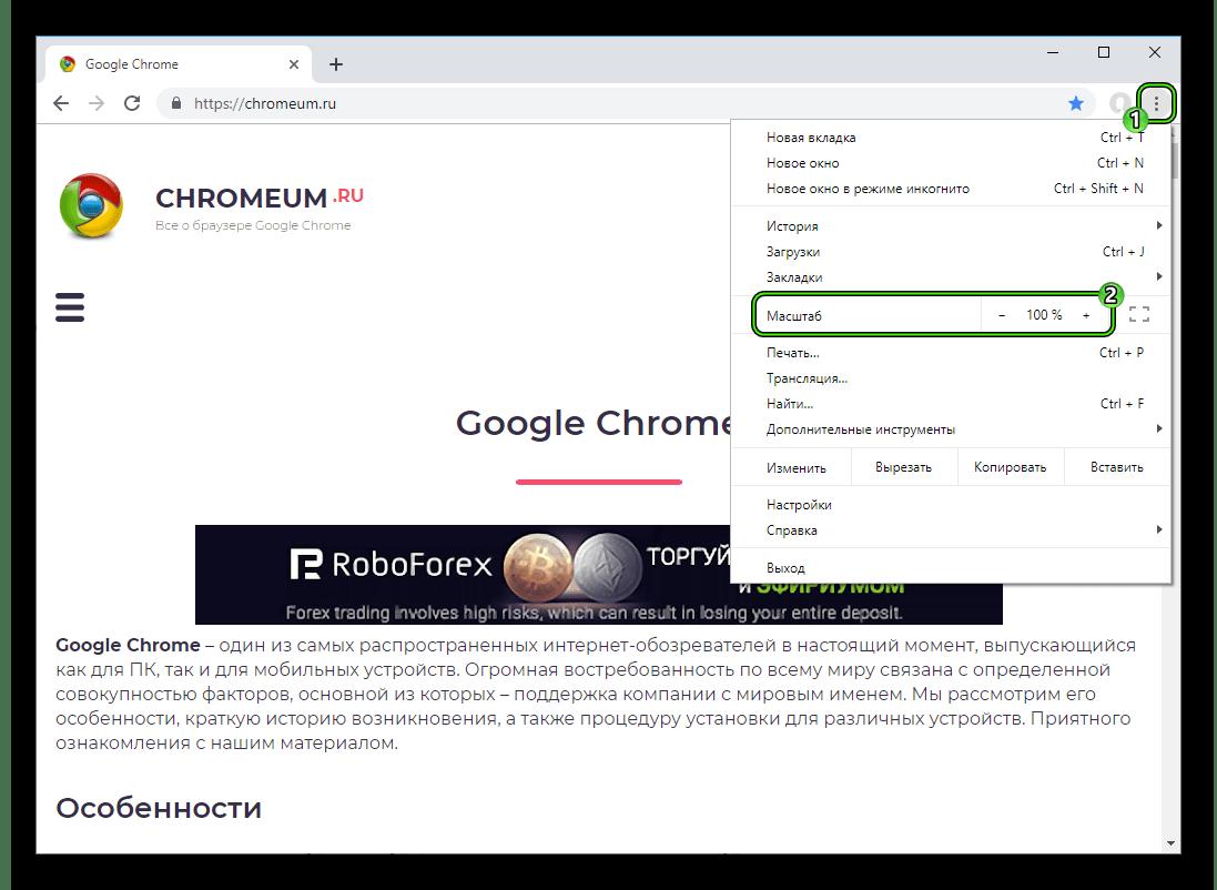 Punkt-Masshtab-v-osnovnom-menyu-internet-obozrevatelya-Google-Chrome.png