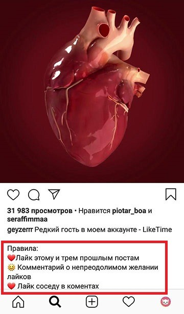 laiktaim-blogera-instagram.jpg