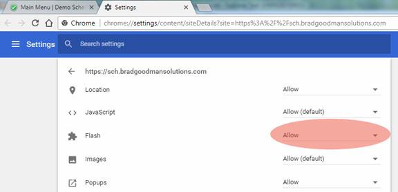 enable-flash-and-javascript.jpg