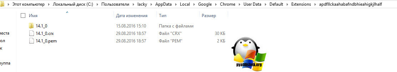 Papka-rasshireniy-v-chrome-3.jpg