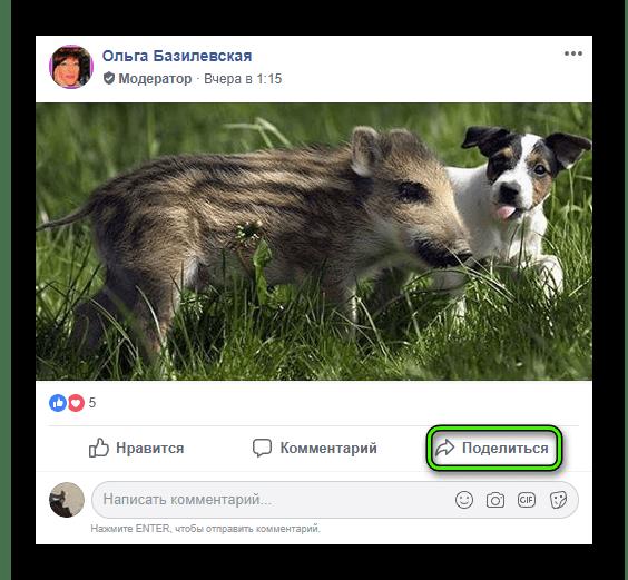 Knopka-Podelitsya-dlya-publikatsii-v-gruppe-na-sajte-Facebook.png