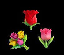flower-symbols.png