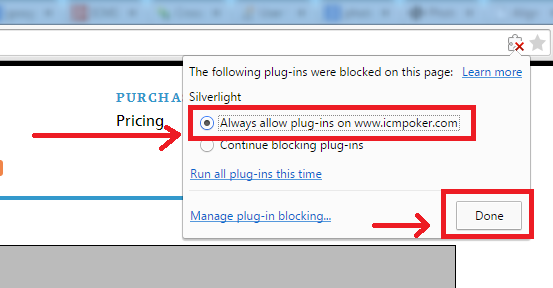 silverlight_always_allow_plugin.png