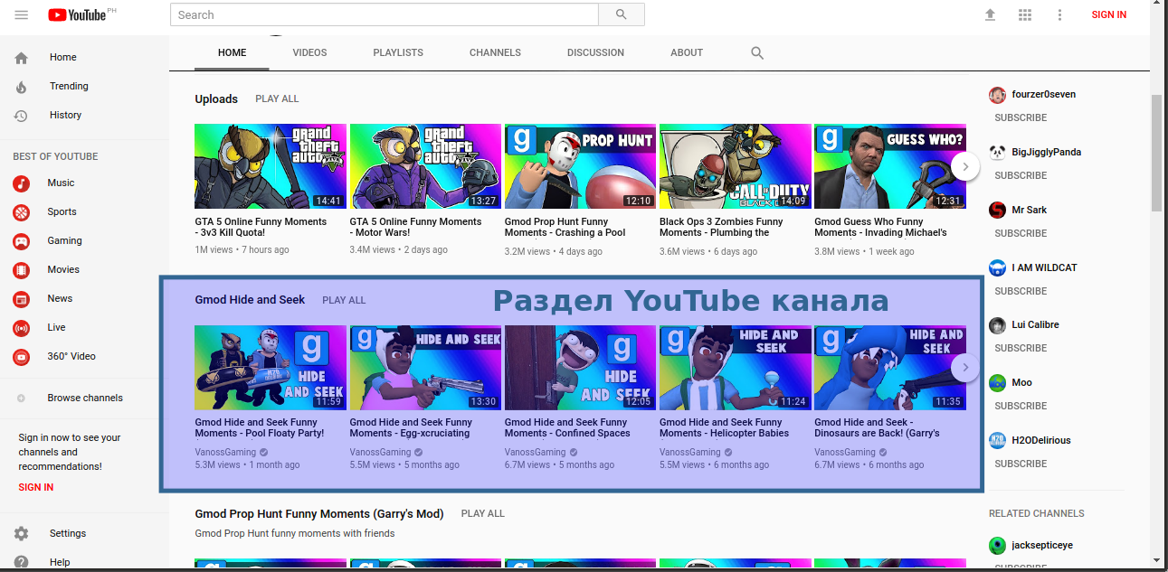 vanosgaming_channel_sections.png